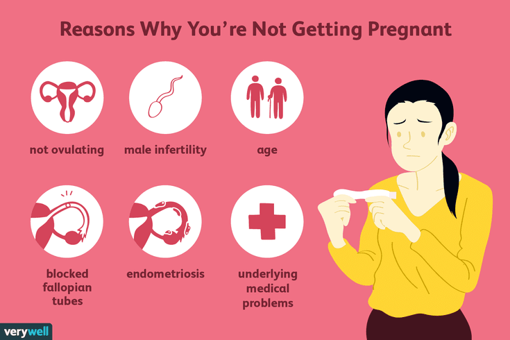 Getting The very best Software To Power Up Your Infertility